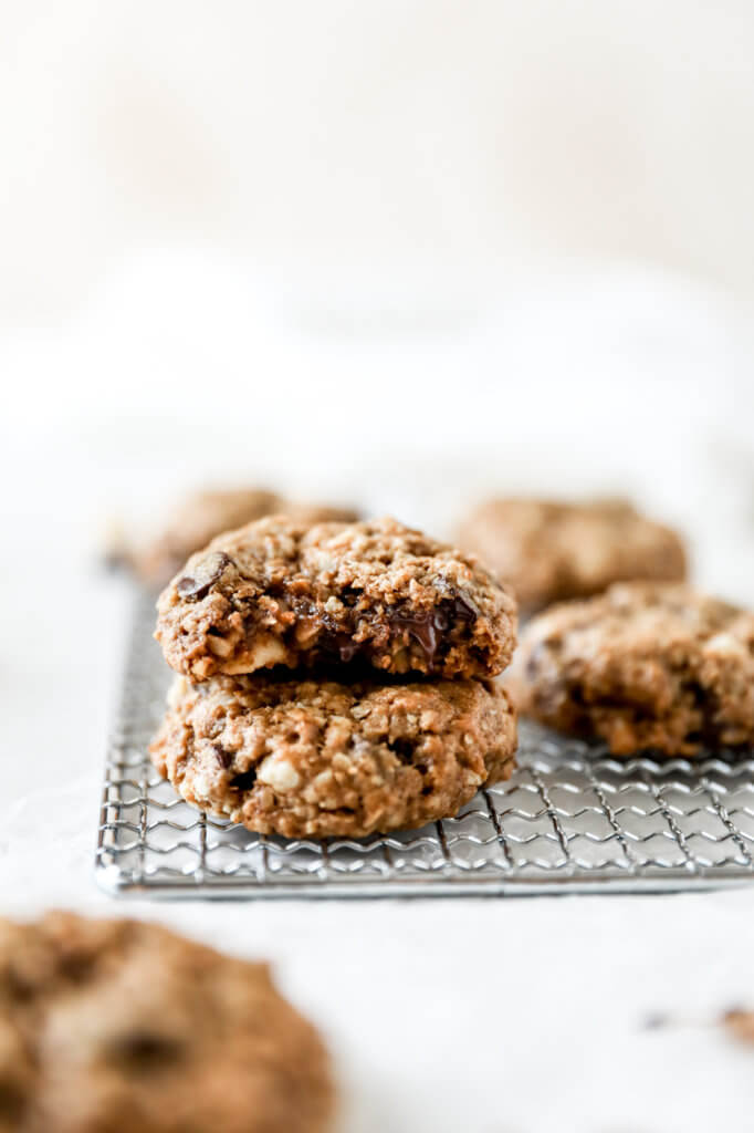 How to Make Hazelnut Chocolate Chip Oatmeal Cookies: Jessi's Kitchen